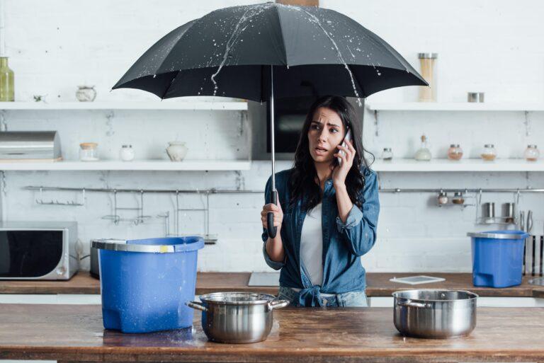 נזקי מים - עובש ורטיבות בבתים